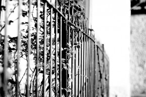 fence-619860_640(1)